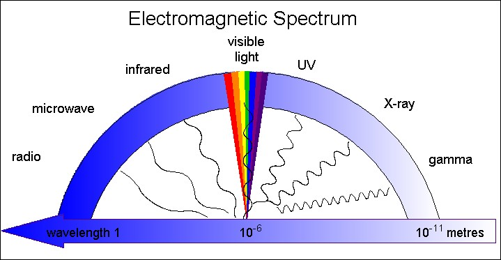 Bildresultat för human eye visible spectrum